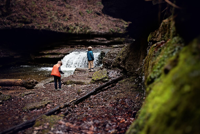 Jenny's boys on the trail to Machine Falls, TN