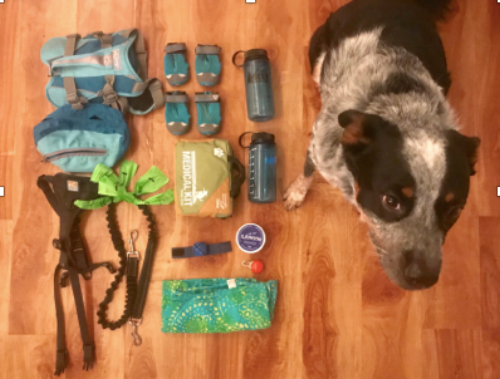 Wes with all of the items in his day pack!