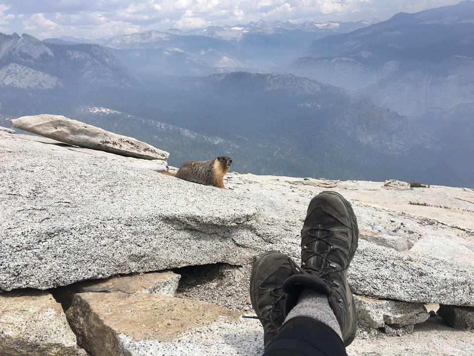 Views from the top of Half Dome