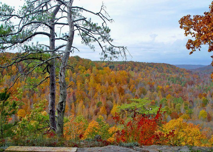fall-at-the-point-overlook.jpg