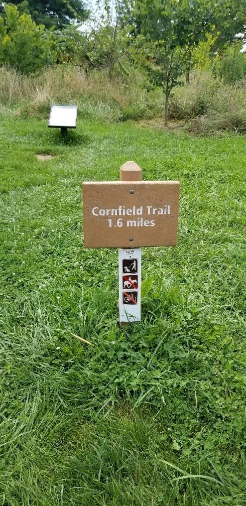 cornfield-trailhead.jpg