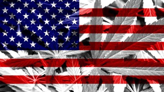 Cannabis 4 America