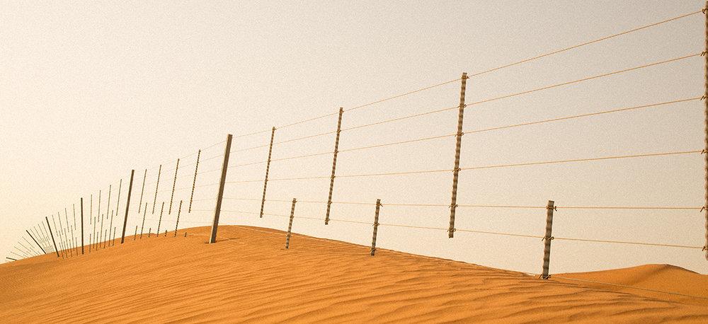 Desert Camel Fence UAE.jpg