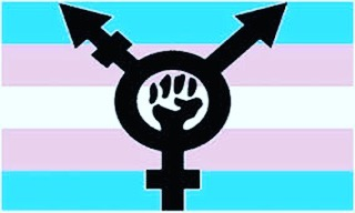 I don't know what to say. My heart is breaking for my trans friends, loves and community. This bullshit legalized discrimination brought down by trump and the alt-right will not stand. We will fight!