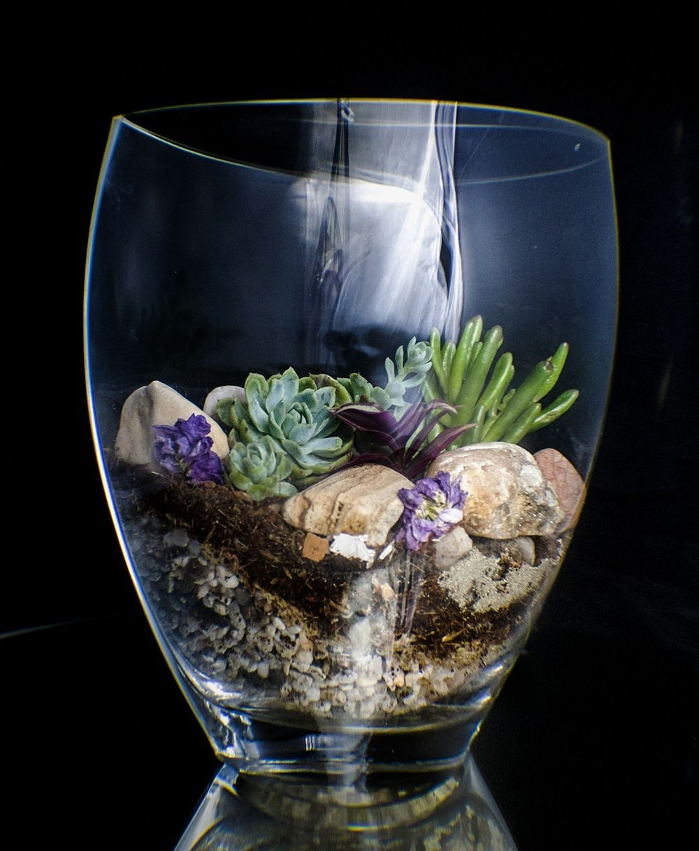 Medium-Succulent-Terrariumsucculents-Found-crystal-rock-dried-flowers-2015.jpg