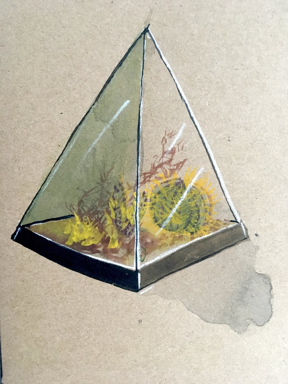 terrarium-watercolor-geo-2.jpg