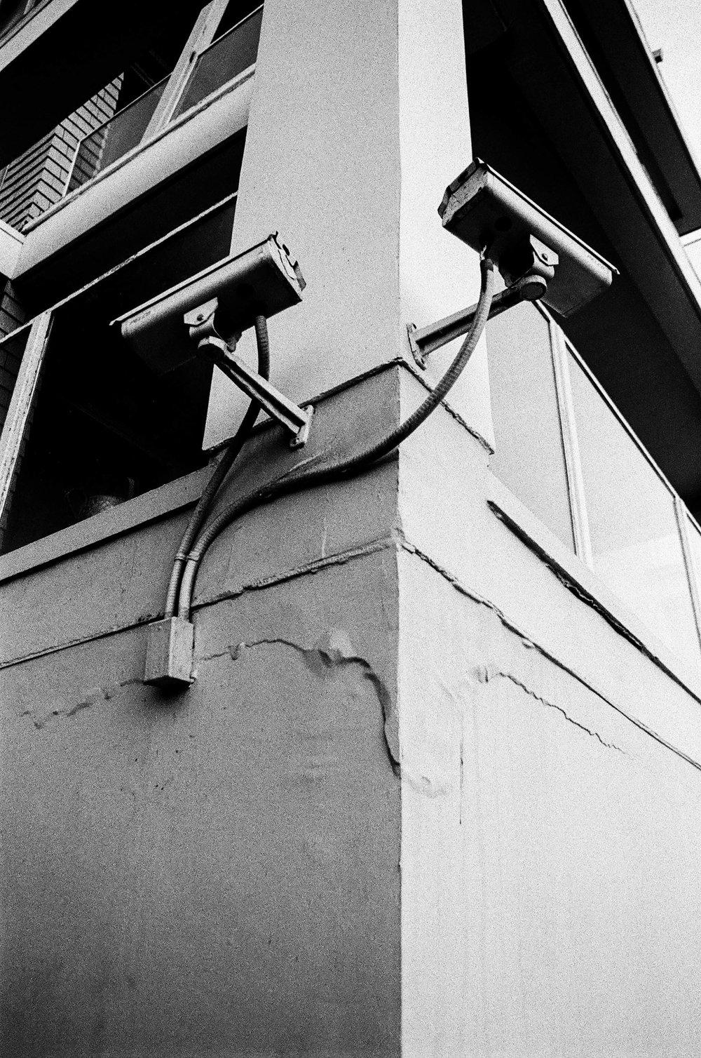 Kodak TRI X 400 117.jpg