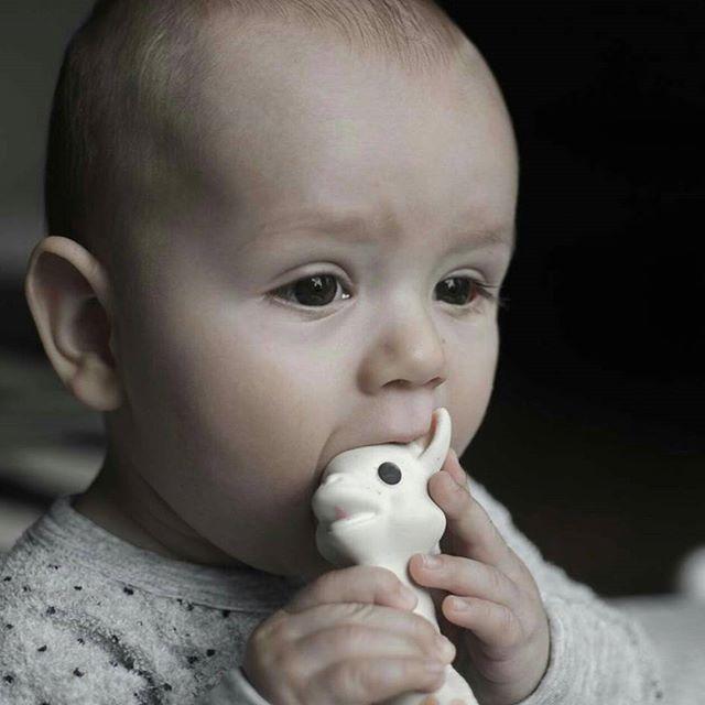 Amour 💛 @bozomaher1  #handmadeinfrance #sophiethegiraffeaustralia #bestteethingtoy #teethingtoy #naturalrubber #nontoxicpaint #organic #teethingbaby #babyshowergift #instababy #teether