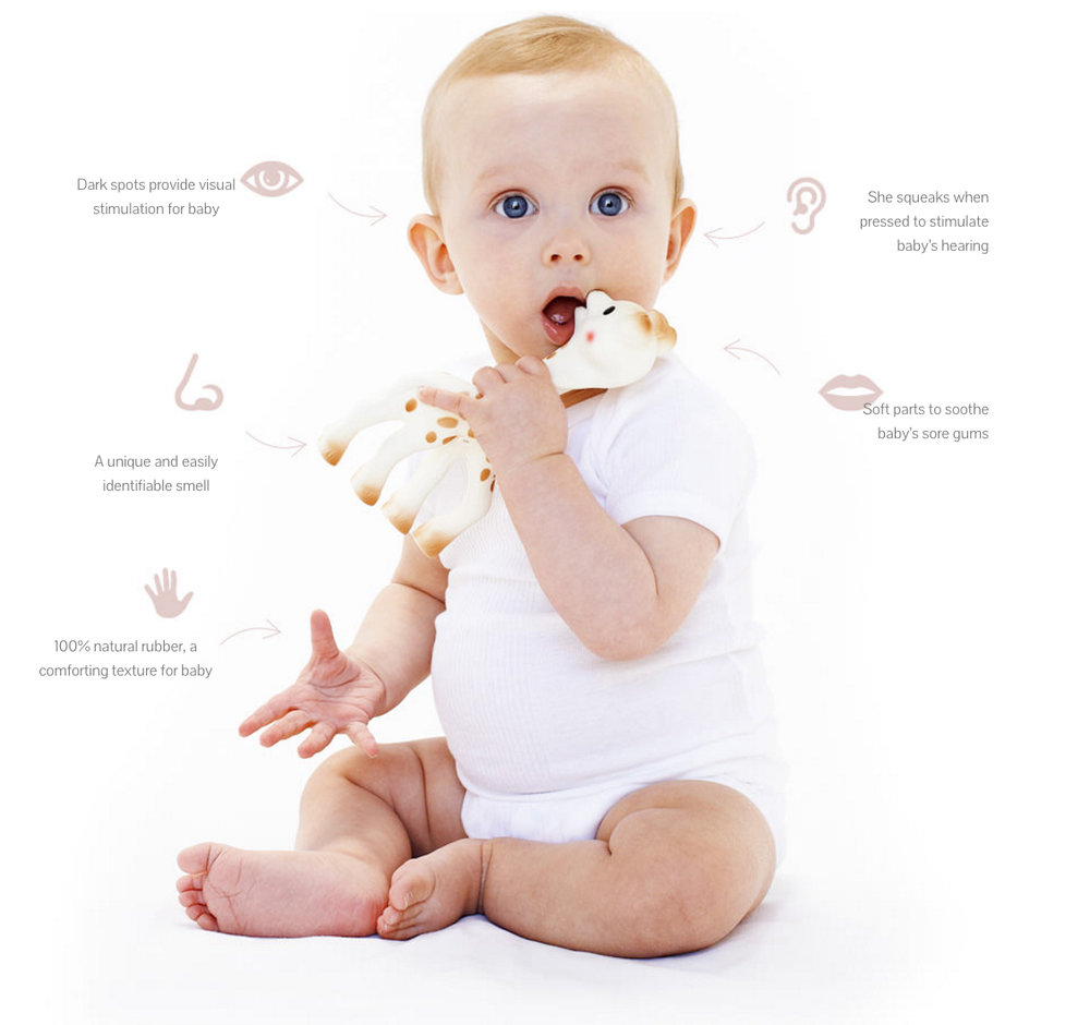 The baby's 5 senses
