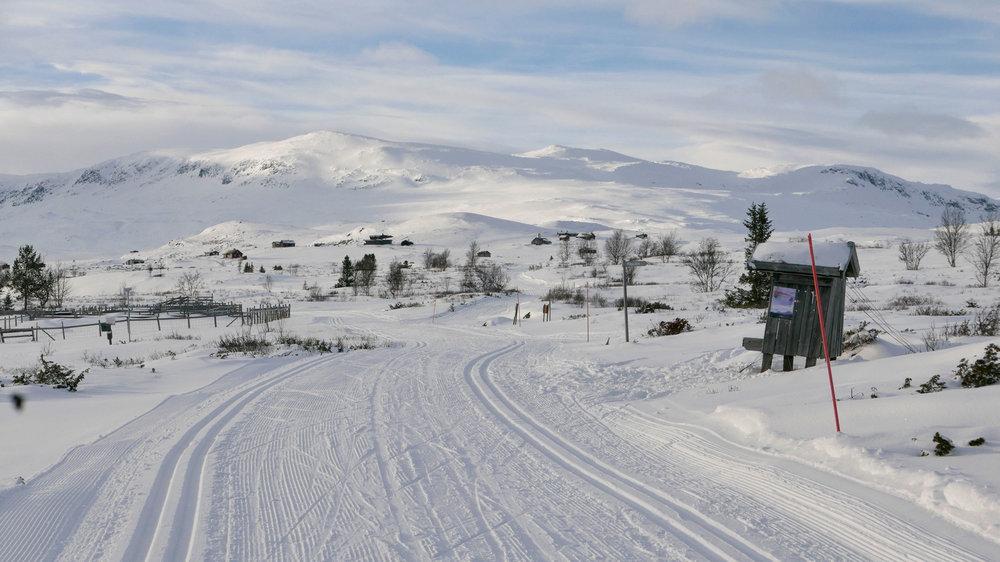 Skiløype-Leveldåsen_Reineskarvet_1280896.jpg