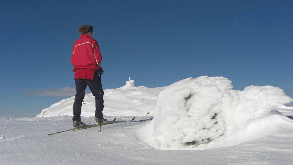 1284-moh-på-Sørbølsfjell-i-Flå-kommune,-påsken-2008.jpg