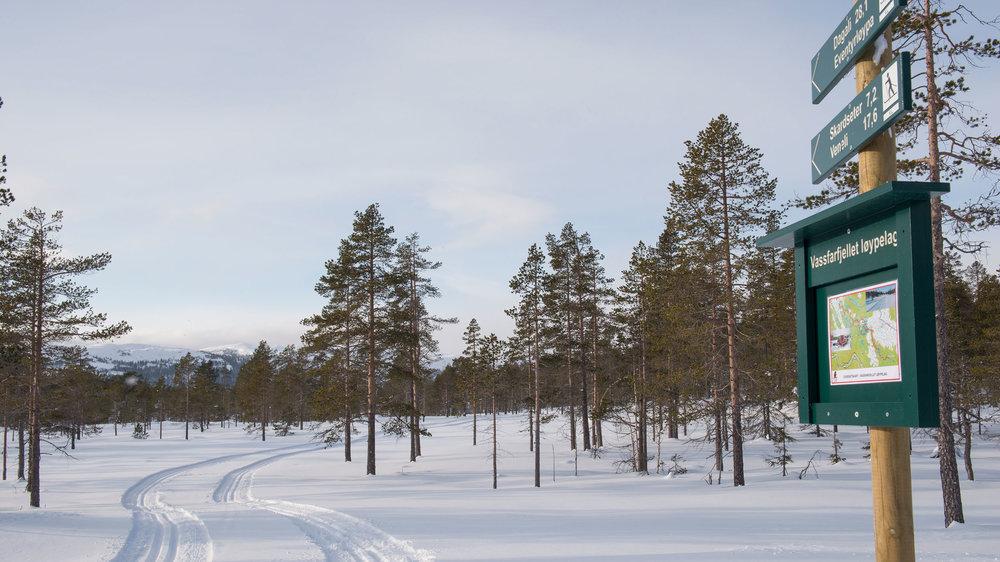 Vassfarfjell-løypelag_SVA8444.jpg