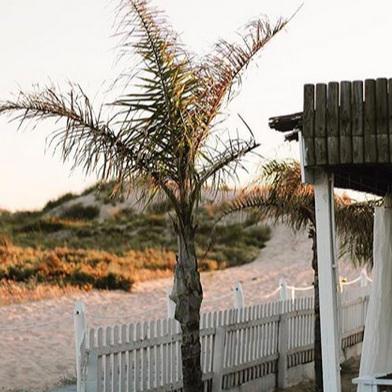 DANS LES DUNES : CABANA DO PESCADOR      OPEN - week-ends ONLY     Praia da Cabana do Pescador, 2825-491 Costa da Caparica / 21 296 2152