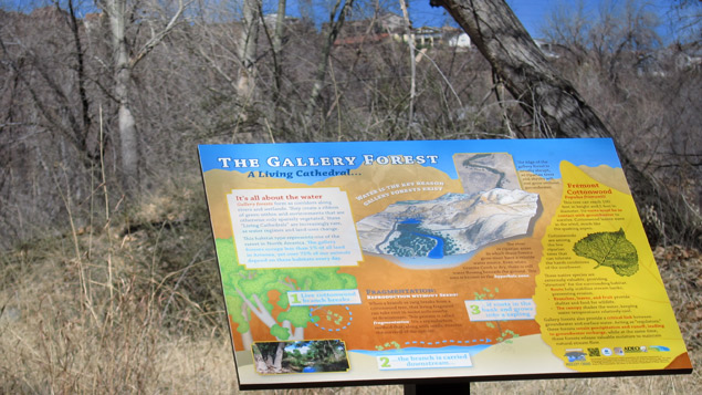 Gallery Forest interpretive sign installed at Watson Woods Riparian Preserve. Photo by  Prescott Creeks .