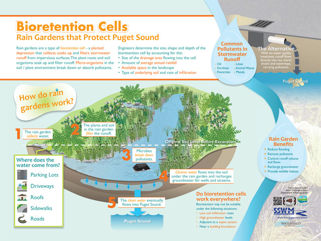 Interpretive Sign of Raingardens and Bioretention Cells at Kitsap County by The Watershed Company
