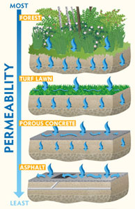 Interpretive Sign about Permeability and Stormwater Runoff by The Watershed Company