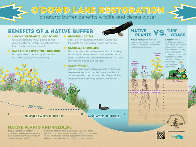 Interpretive sign about shoreline restoration and the benefits of native plants by The Watershed Company.