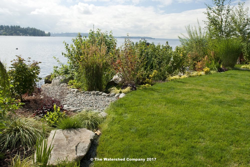 7 Design ideas to enhance your shoreline - There are plenty of ways to naturalize your shoreline. Which one is right for you?