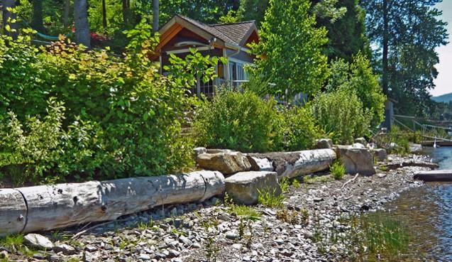 Anchored log shoreline