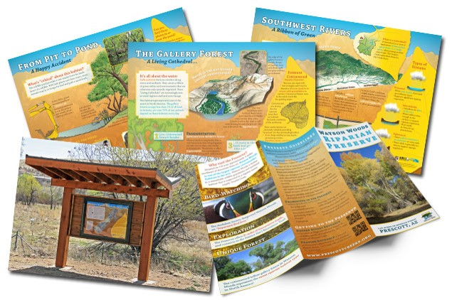 At Watson Woods Riparian Preserve, we developed interpretive signs, a trail map, and a brochure at the same time. See a breakdown of the design processfor this project.