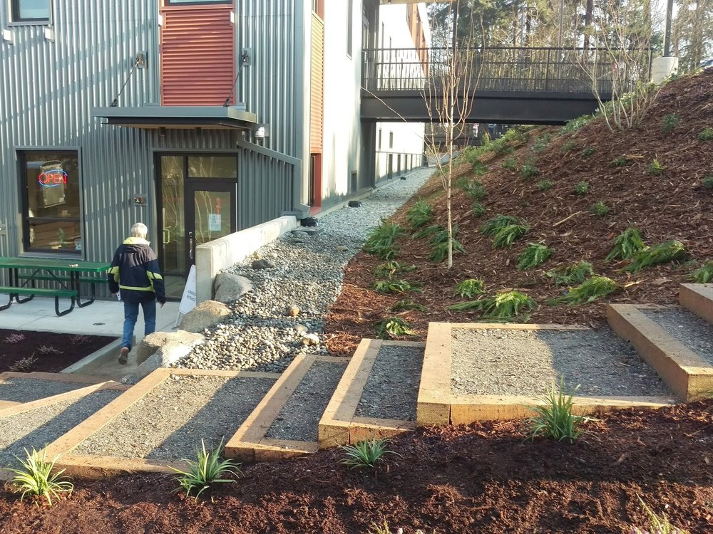 Seattle Humane  - We worked with staff and the project architect to permit and design a new facility and landscape that matched the area's natural character, including new forested trails and overlooks that improve accessibility and offer a unique real-world setting for training adoptable dogs. Read More →