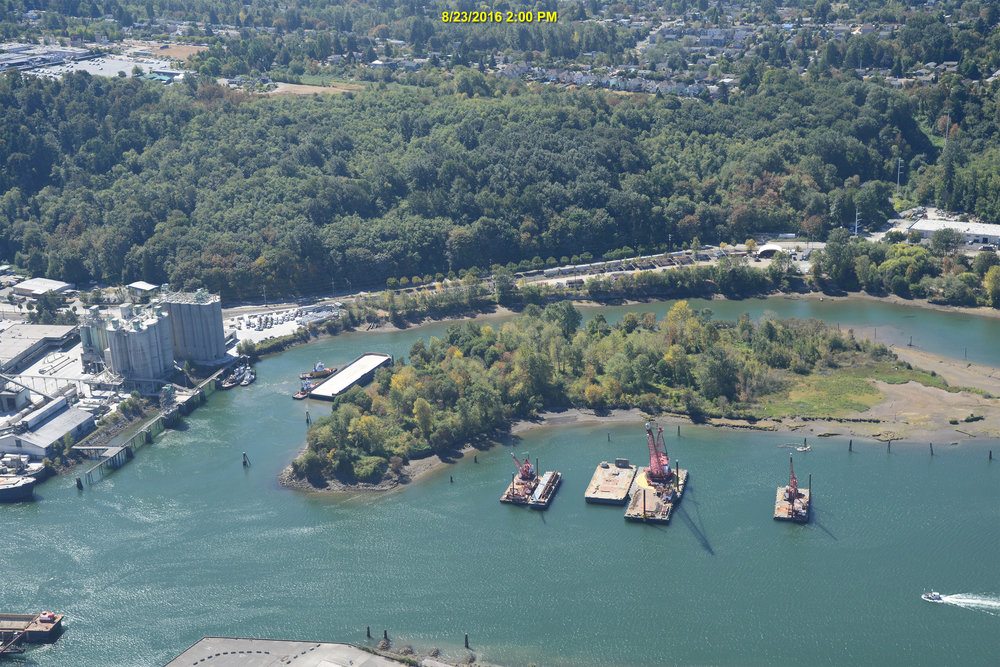 Using regionally relevant information and best available science related to carbon sequestration, Watershed is providing the Port with estimated sequestration rates for its proposed restoration efforts along Elliott Bay and the Lower Duwamish River.