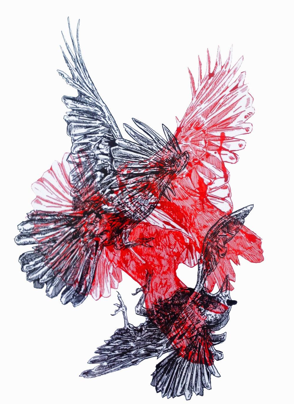 birds overlap 21.jpg