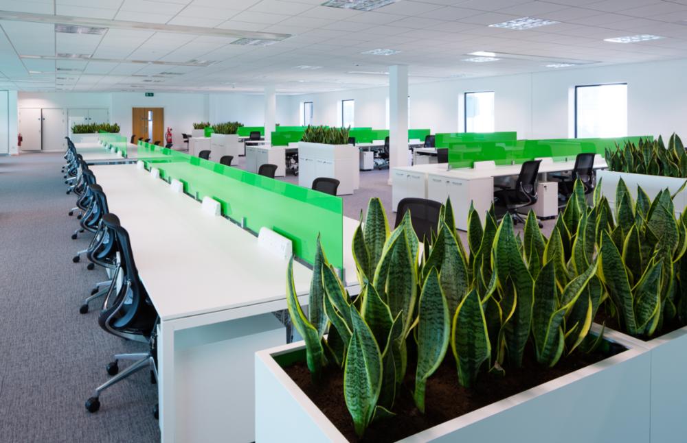 Bluestone mccreery office furniture mccreery office interiors - Squarespace dublin office ...