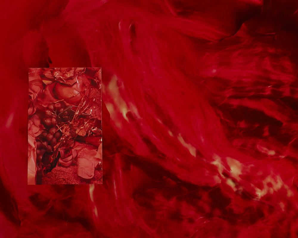 11Gatto_StudyoftheInterstialBody67.jpg