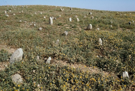 Children's graves. Iraq, 1992