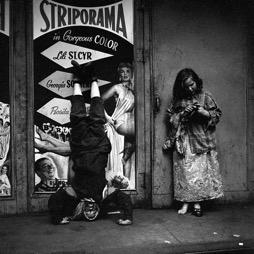 November, New York, NY,  1953