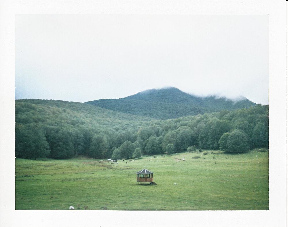 Polaroid - Online Gallery >>
