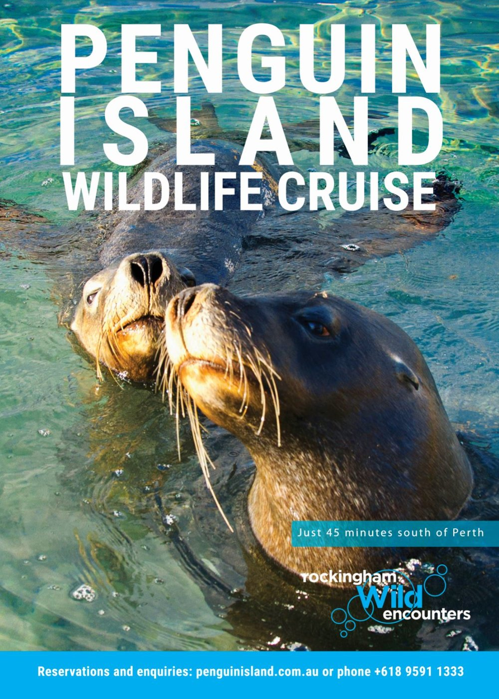winter cruise brochure cover.JPG