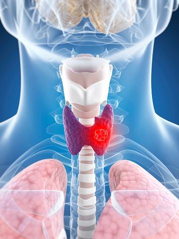 healthy-thyroid