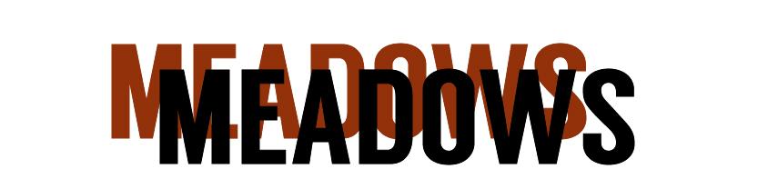 MEADOWS-01