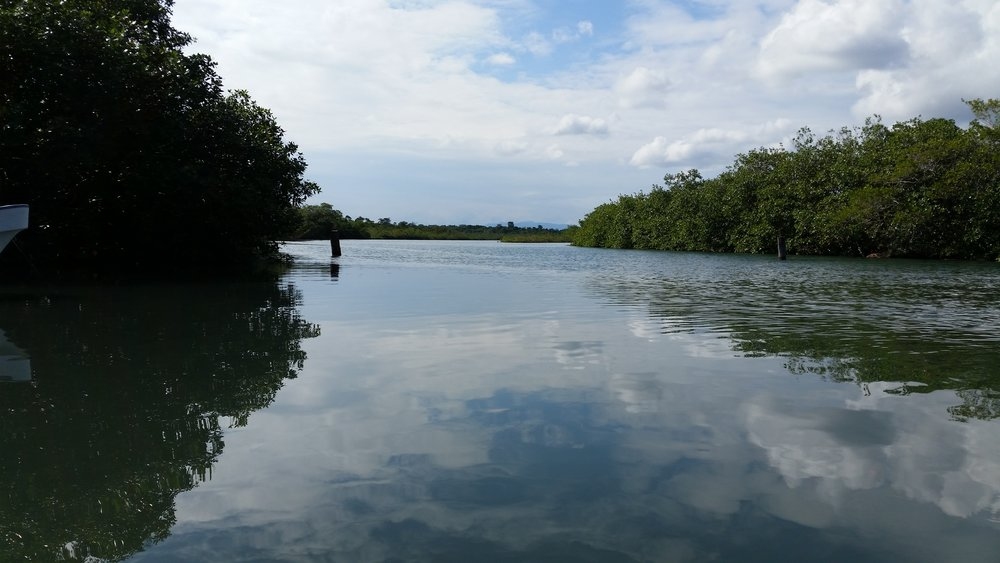 Boat taxi views into Placencia