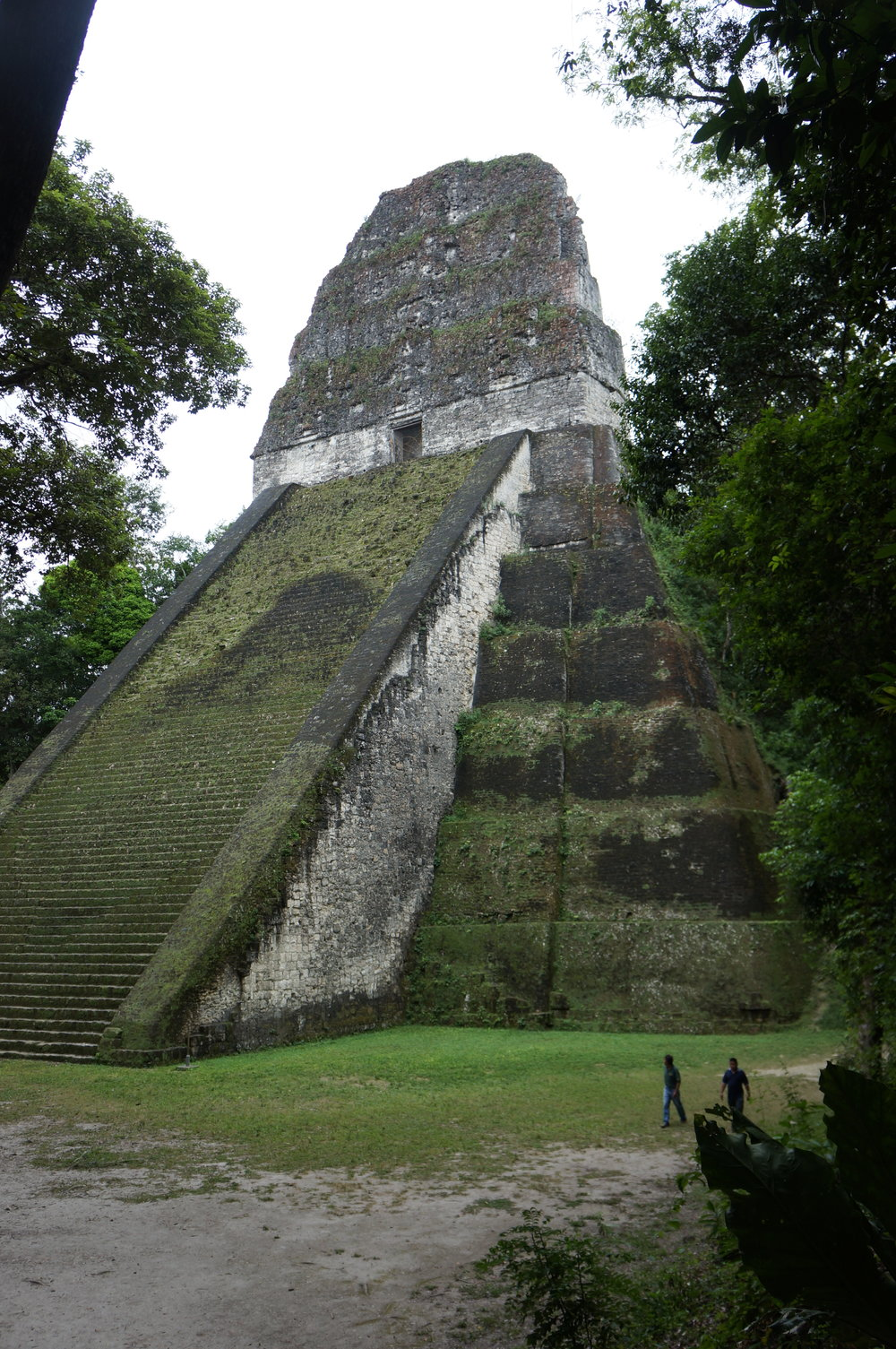 Temple V - Second highest structure in Tikal