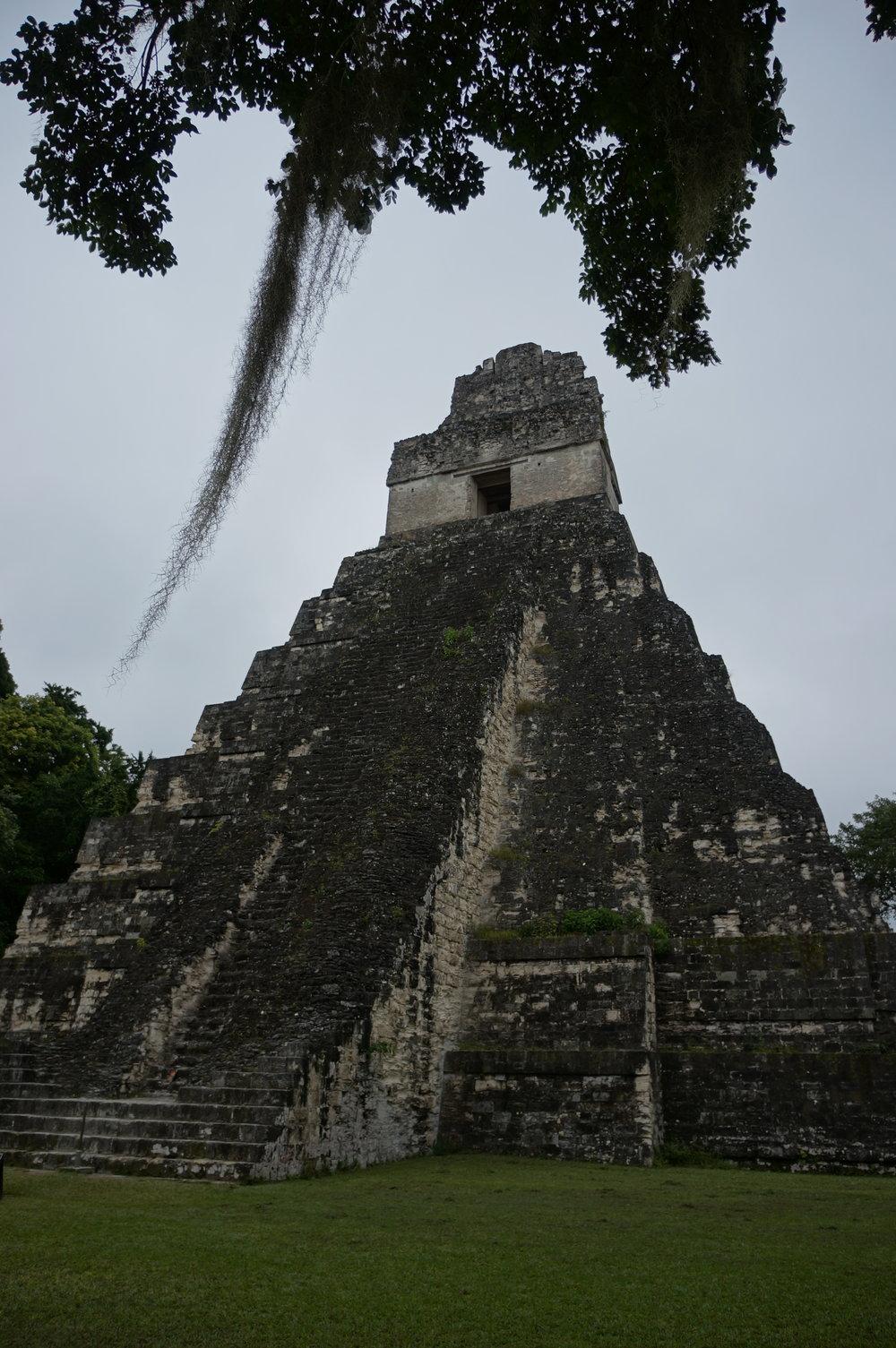 San Ignacio - Dense jungle, Tikal ruins, & Cave adventures
