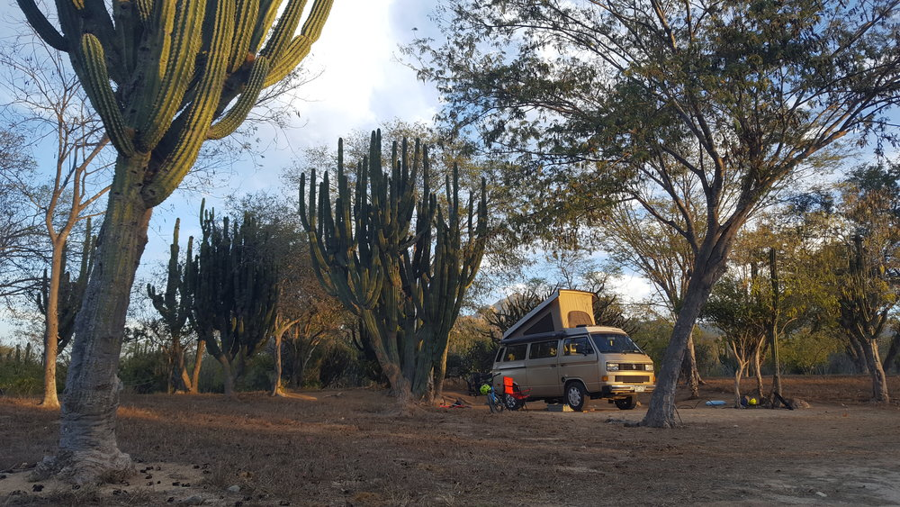 Our Baja campsite among the cacti. An all-time favorite.