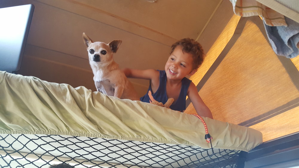 Inviting Goonie to the top bunk!