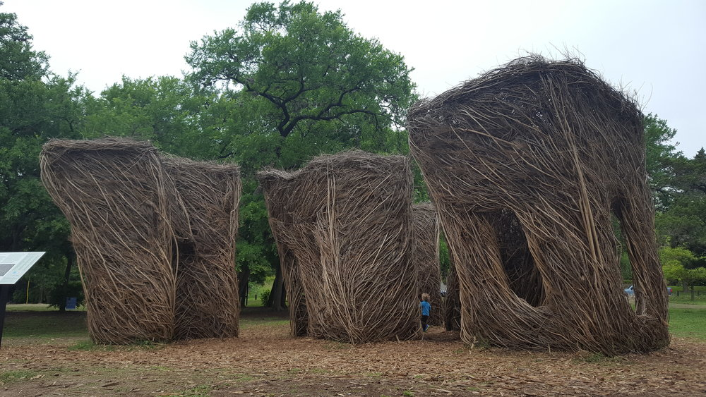 Pease Park sculpture made by famous environmental artist built with an invasive species from in and around Austin.