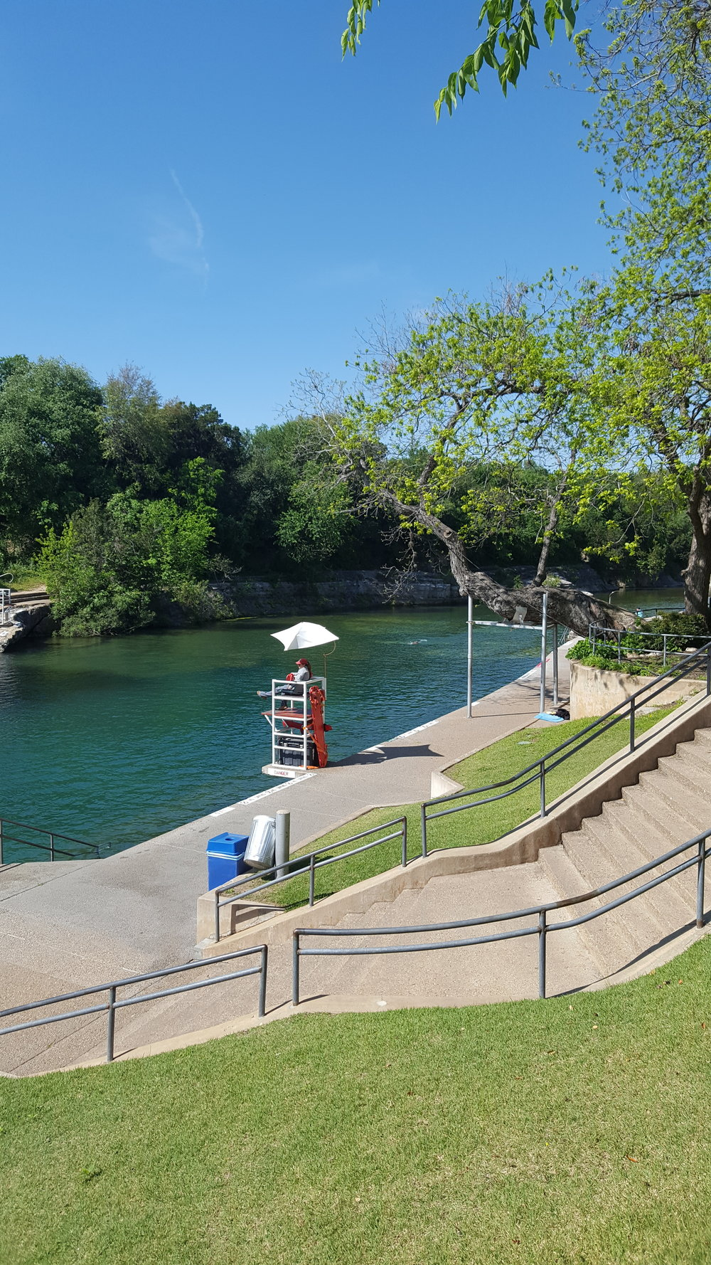 Barton Springs - An awesome river pool right in town!