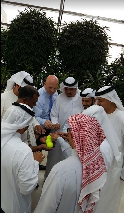 UAE Government Accelerators