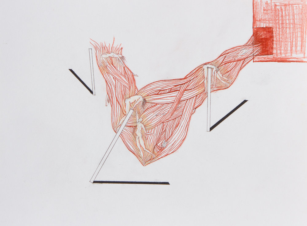 THE PERCH, Suture Drawing #3, Mixed Media,, 2018. Collection of the artist.