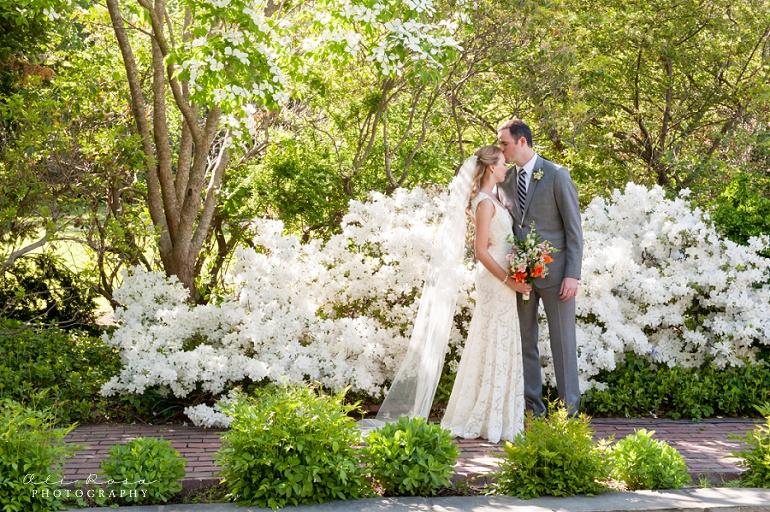arlington town hall wedding Ali Rosa Photography31