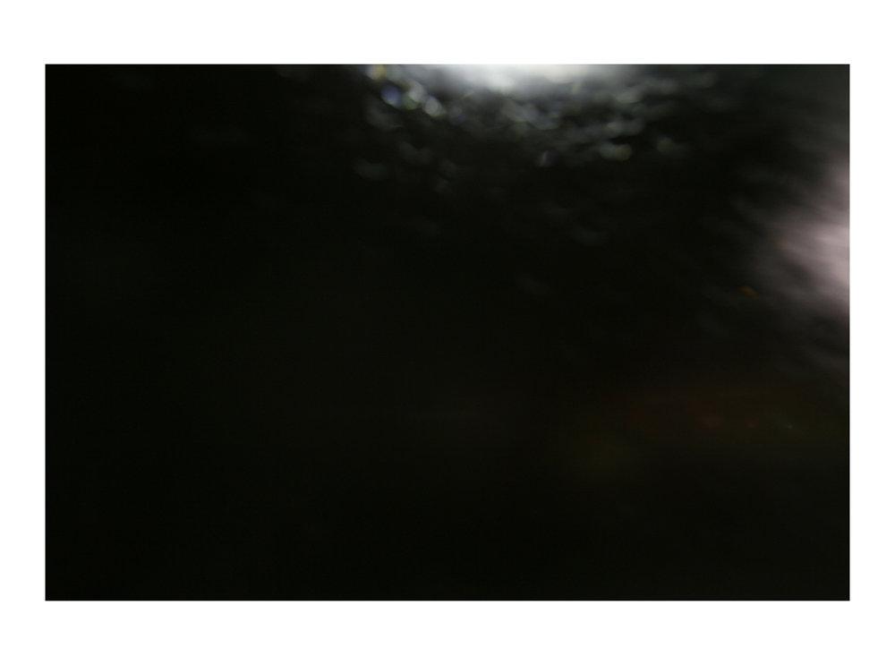 RY4F4506.jpg