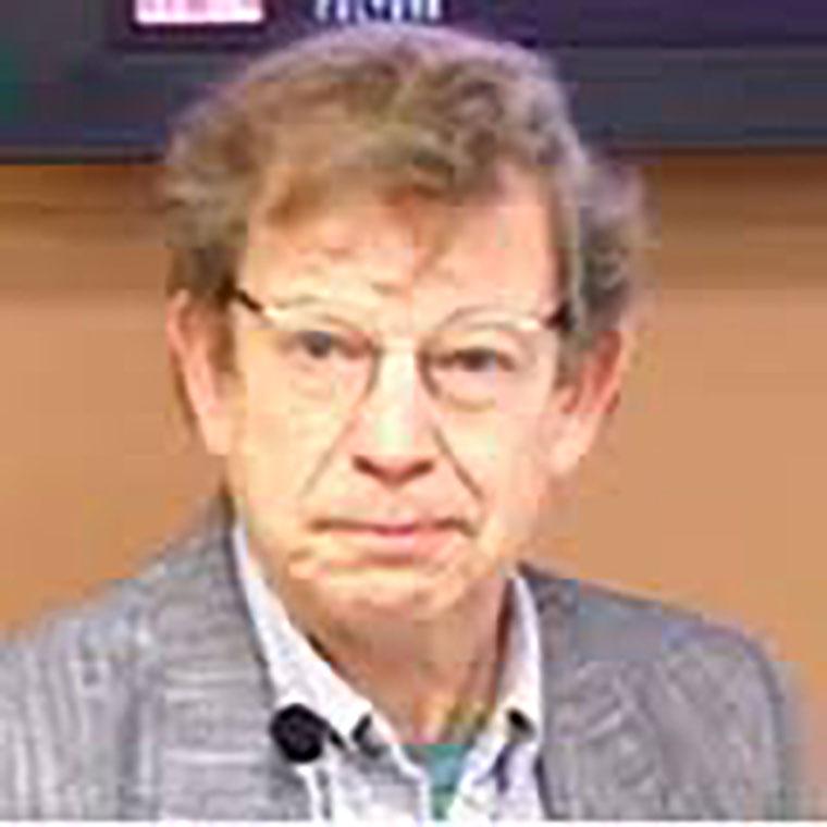 Professor Andrew Wernick