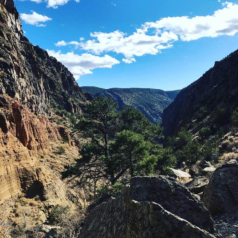 Looking South down frijoles canyon towards the rio grande river in bandelier national monument