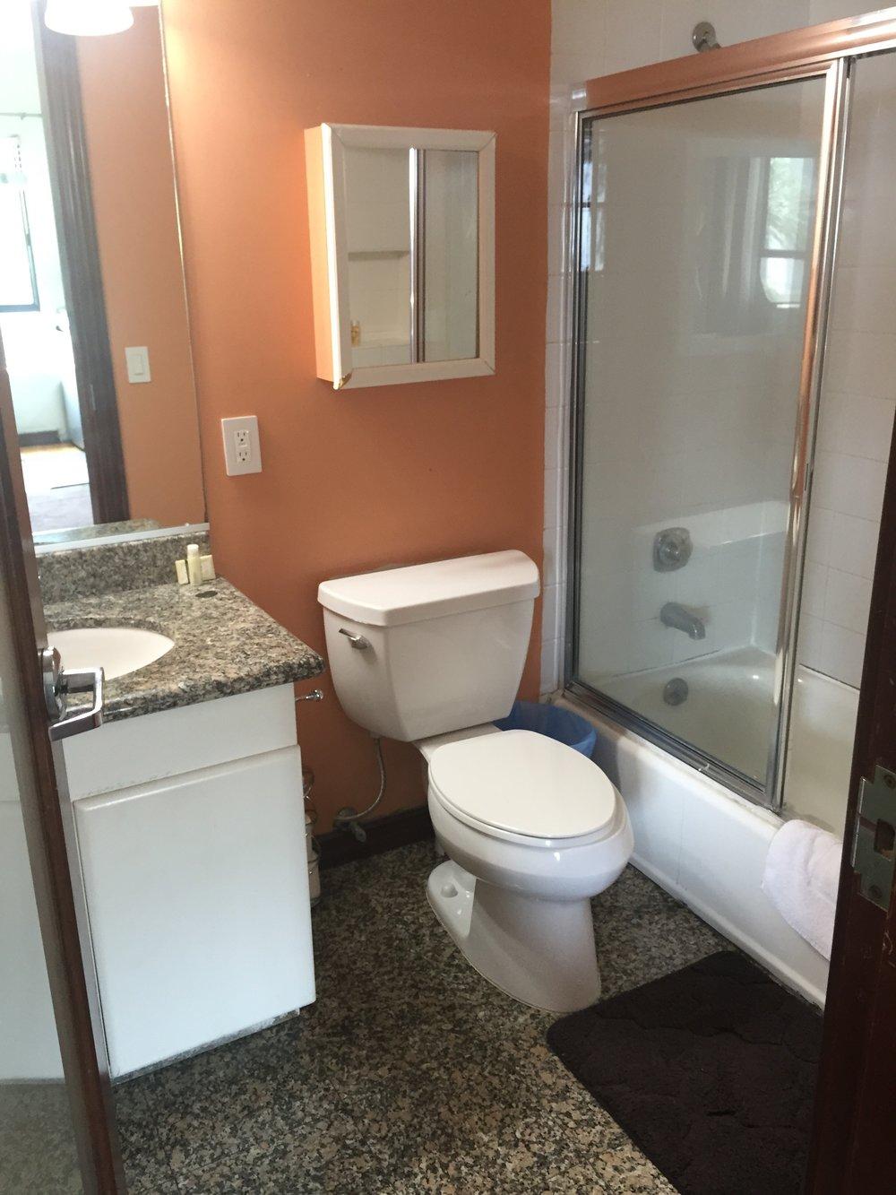 beforebathroom1.jpg