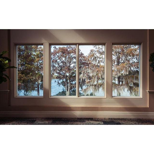 Windows #florida